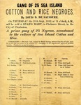 """Advertisement, broadside: """"Gang of 25 Sea Island Cotton and Rice Negroes"""" (for sale) by Louis D. DeSausure, Charleston, S.C., 1852."""